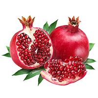 Pomegranate SKIN KimiKombucha