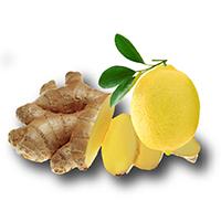 Ginger Lemon DETOX KimiKombucha